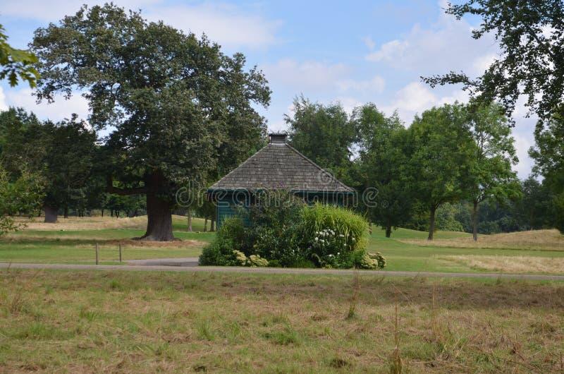 Dziki Brytania, Hatfield zdjęcia stock