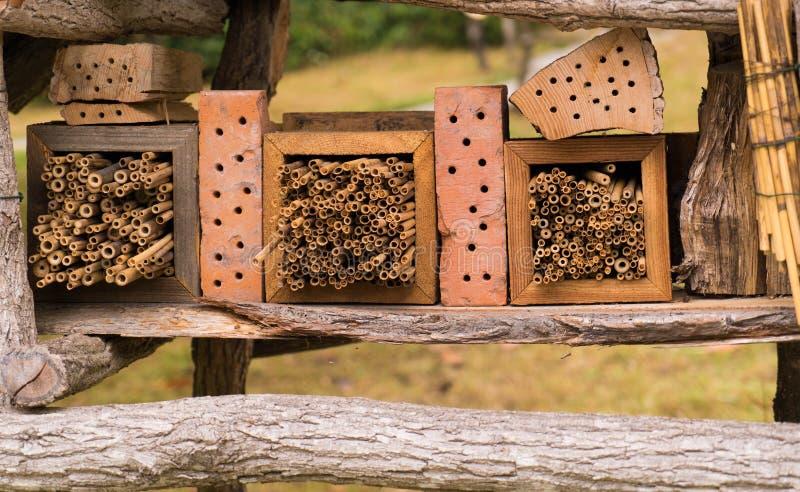 Dziki insekta hotel w szczegółach obrazy royalty free
