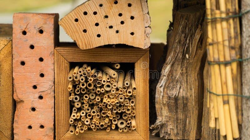 Dziki insekta hotel w szczegółach obrazy stock
