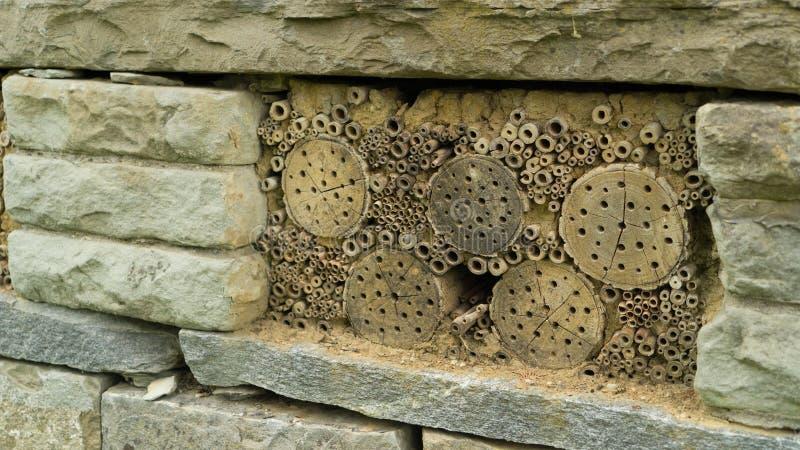 Dziki insekta hotel w szczegółach obraz stock