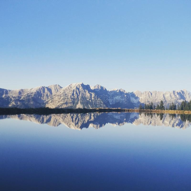 Dziki Kaiser Tirol zdjęcia stock