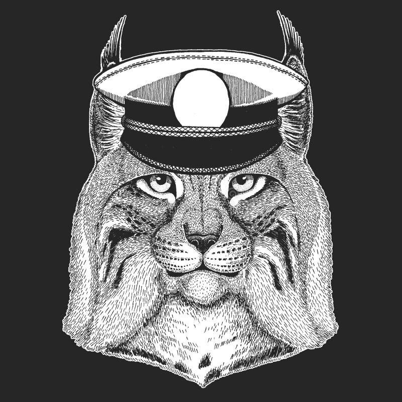 Dziki kot, ryś, ryś rudy, bryka Wektorowy druk dla dzieci Capitan, pirata zwierzę Odważny żeglarz Projekt dla dziecina ilustracja wektor