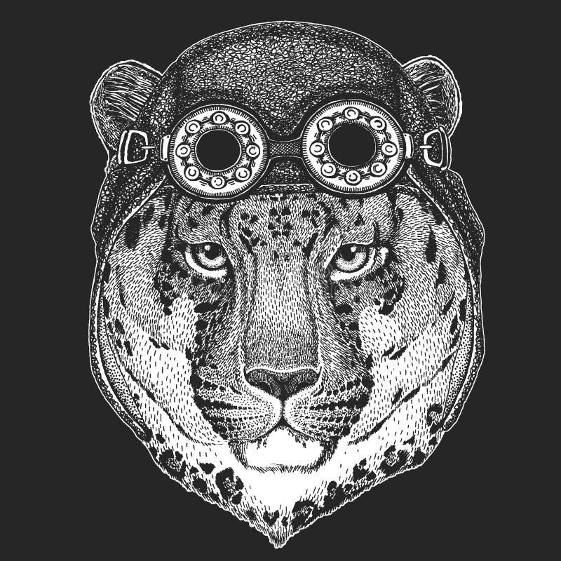 Dziki kota lamparta kota ` - halna ręka rysujący pantera obrazek dla tatuażu, emblemat, odznaka, logo, łata, koszulki Chłodno zwi ilustracja wektor