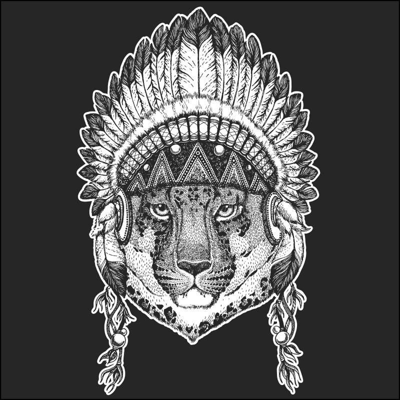 Dziki kota lamparta kota ` - halnej pantery rodowitego amerykanina Chłodno zwierzęcy jest ubranym indyjski pióropusz z piórka Boh royalty ilustracja