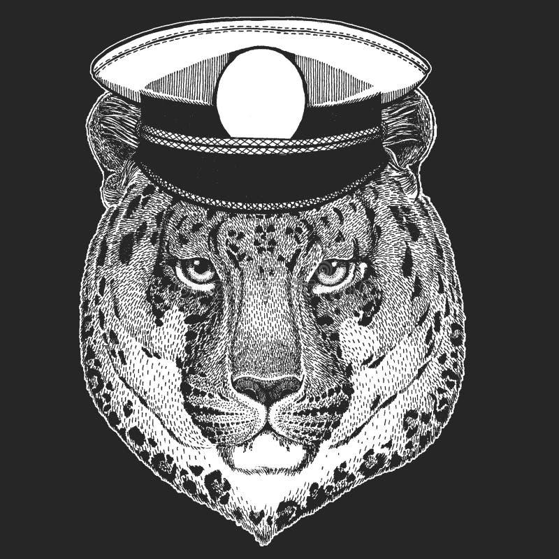 Dziki kota lamparta kota ` - halnej pantery Wektorowy druk dla dzieci Capitan, pirata zwierzę Odważny żeglarz Projekt dla ilustracja wektor
