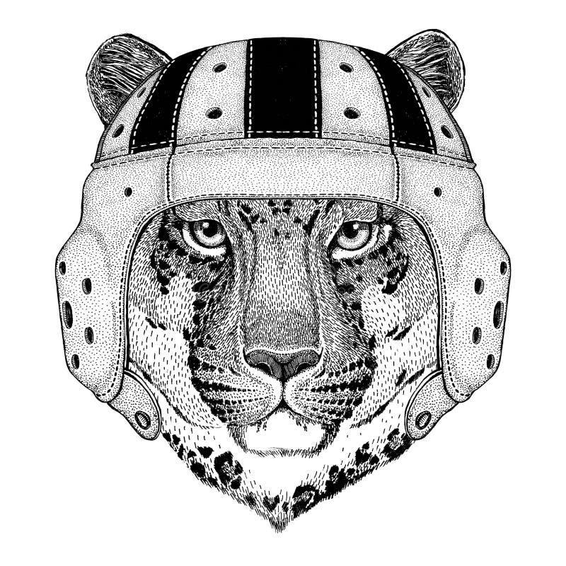 Dziki kota lamparta kota ` - halny pantery dzikie zwierzę jest ubranym rugby hełma sporta ilustrację royalty ilustracja