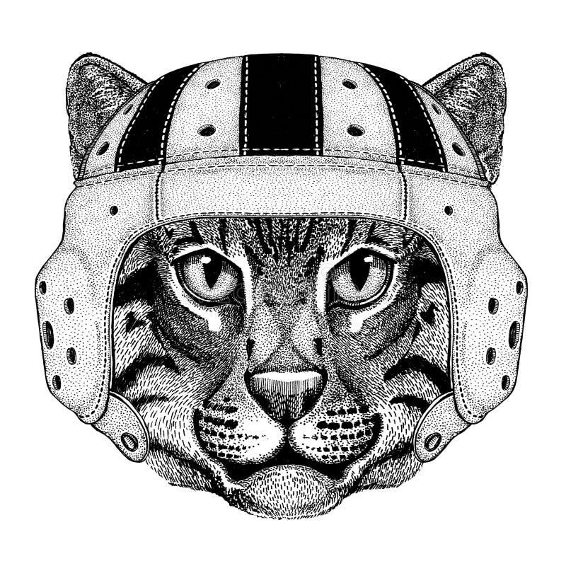 Dziki kota połowu kota dzikie zwierzę jest ubranym rugby hełma sporta ilustrację ilustracja wektor