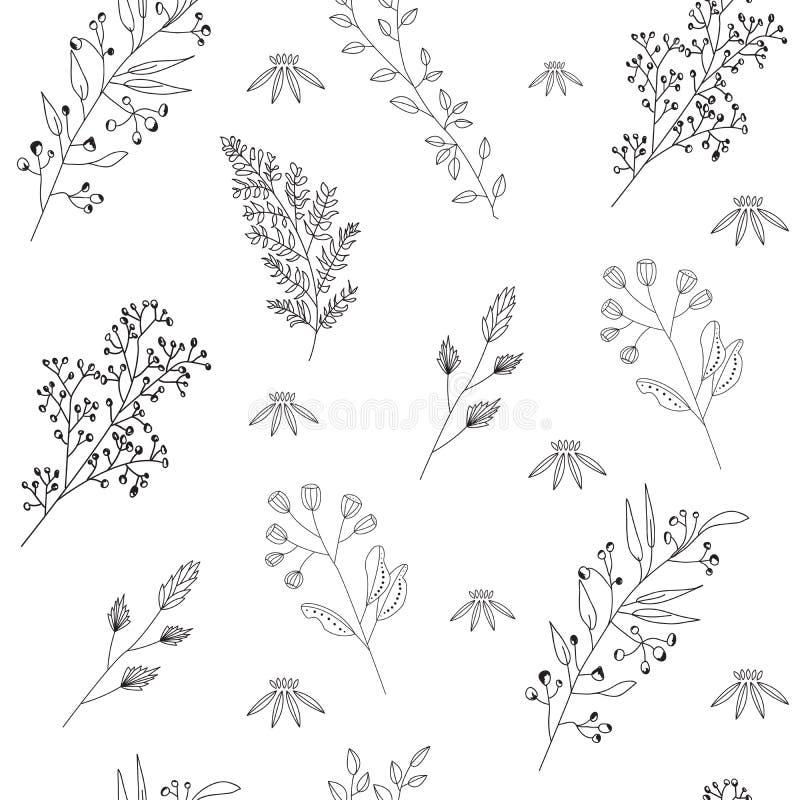 dziki kwiatu wz?r ilustracyjny bezszwowy wektor Czarny kontur Graficzny designe na białym odosobnionym tle royalty ilustracja