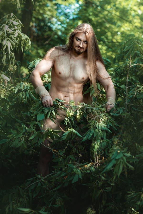 Dziki mężczyzna w drewnach fotografia stock