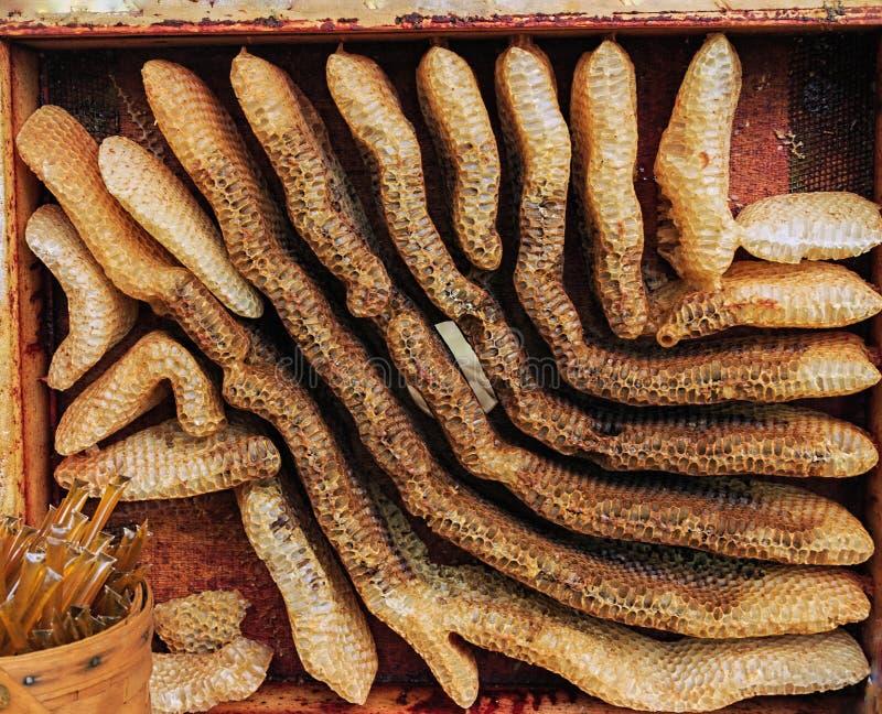 Dziki Organicznie honeycomb zdjęcia stock