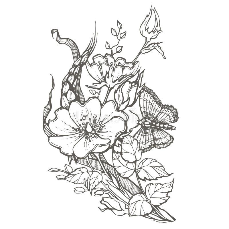 Dziki pies wzrastał kwiaty z motylim rysunkowym wektorowym clipart na białym tle royalty ilustracja