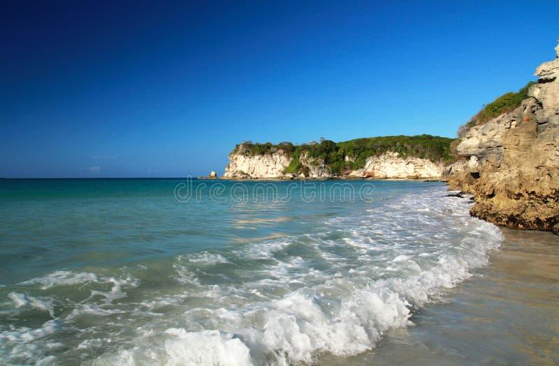 dziki plażowy karaibski Macao zdjęcie stock