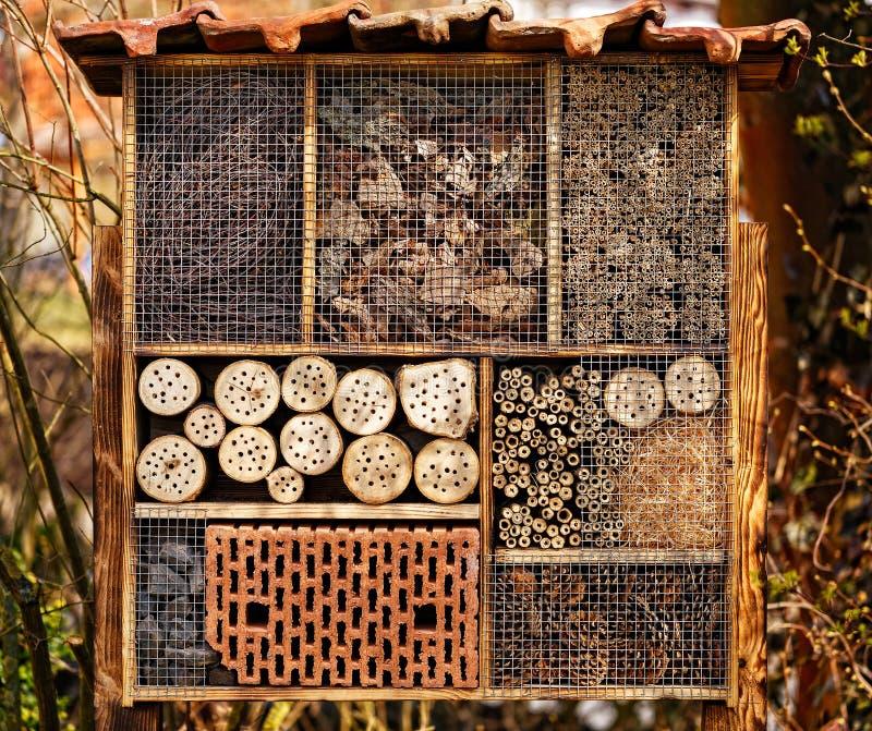 Dziki pszczoła hotel - insekta hotel fotografia royalty free