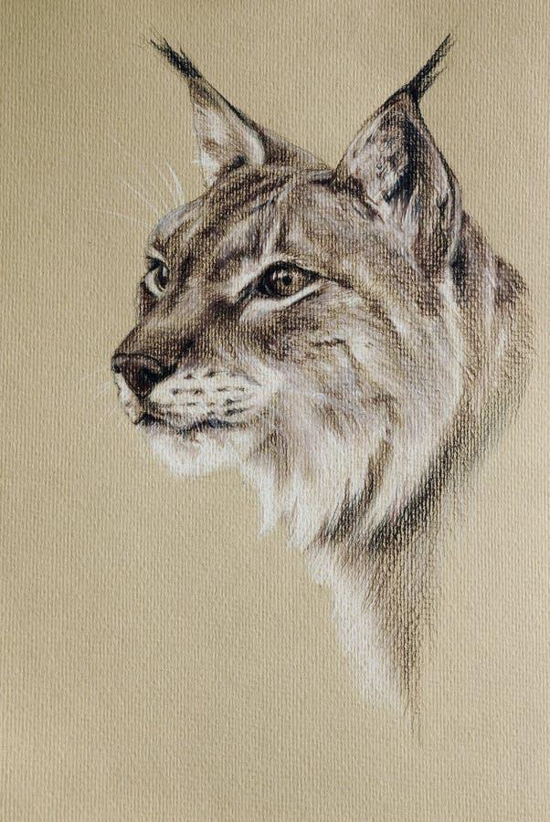 Dziki rysia portret royalty ilustracja