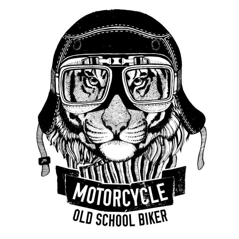 Dziki tygrys dla motocyklu, rowerzysta koszulka royalty ilustracja