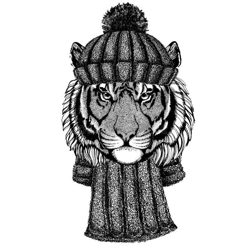 Dziki tygrysi Chłodno zwierzę jest ubranym trykotowego zima kapelusz Ciepła pióropuszu beanie bożych narodzeń nakrętka dla tatuaż ilustracja wektor