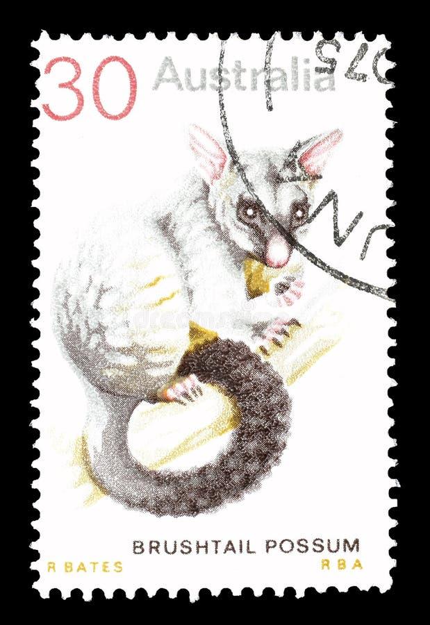 Dziki ?ycie na znaczkach pocztowych zdjęcia stock