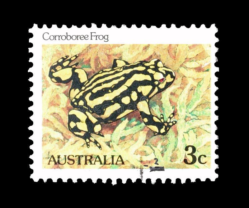 Dziki ?ycie na znaczkach pocztowych zdjęcie stock