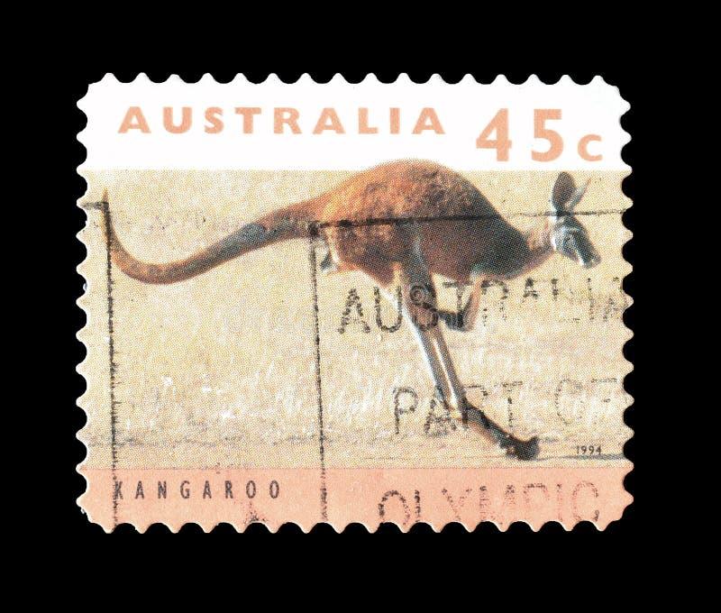 Dziki ?ycie na znaczkach pocztowych fotografia stock