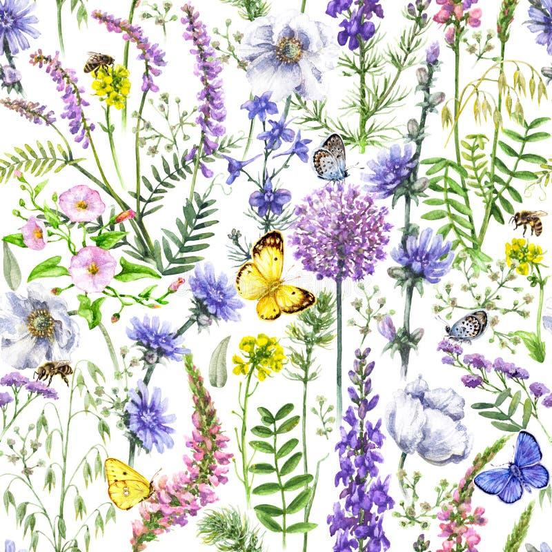 Dzikich kwiatów i motyli wzór royalty ilustracja
