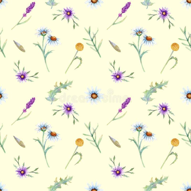 Dzikich kwiatów tło ilustracja wektor