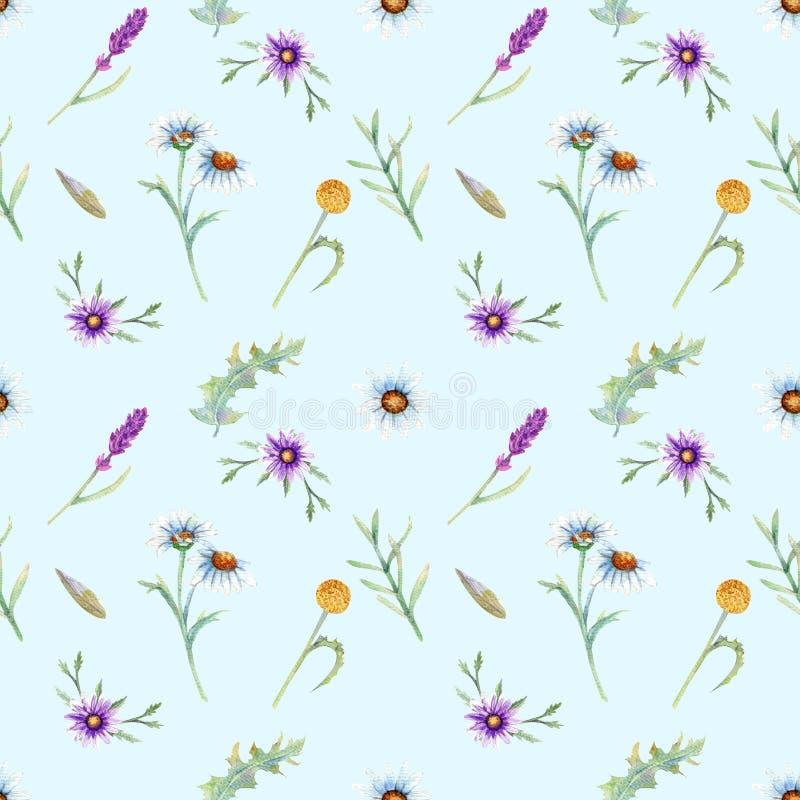 Dzikich kwiatów tło royalty ilustracja
