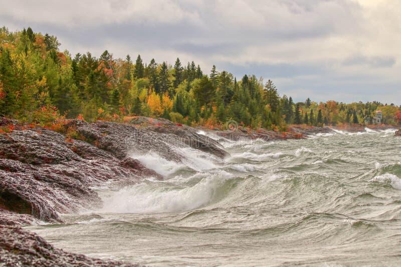 Dzikie burzowe fale na skalistym brzeg Jeziorny przełożony wzdłuż jesień lasu obraz stock