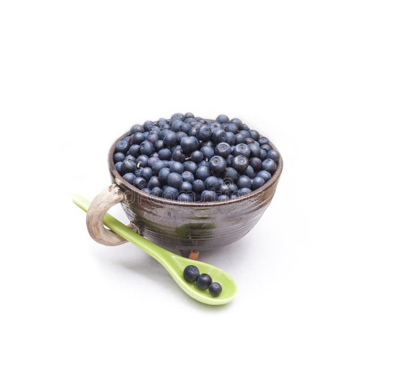 Dzikie lasowe czarne jagody w glinianym pipkin naczyniu z białą rękojeścią na białym tle zdjęcie royalty free