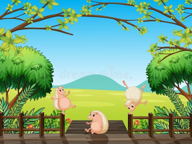 Dzikie zwierzęta bawić się przy mostem royalty ilustracja