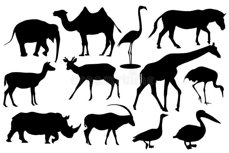Dzikie zwierzęta i ptaki Czarne sylwetek ikony royalty ilustracja