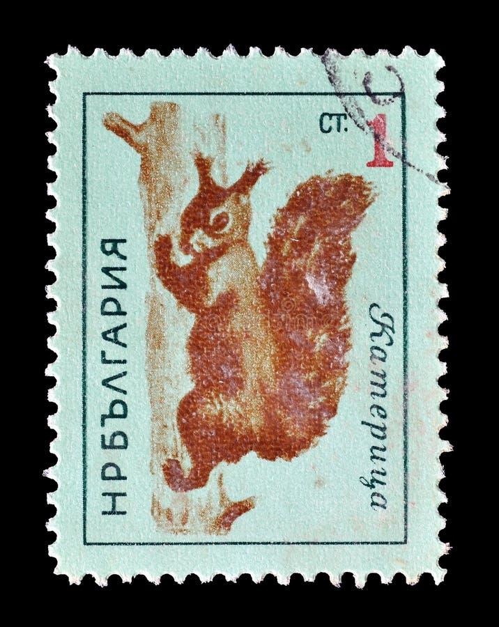 Dzikie zwierz?ta na znaczkach pocztowych obraz royalty free
