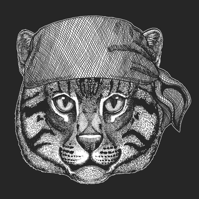 Dzikiego kota połowu kota Chłodno pirat, żeglarz, seawolf, żeglarz, rowerzysty zwierzę dla tatuażu, koszulka, emblemat, odznaka,  ilustracji