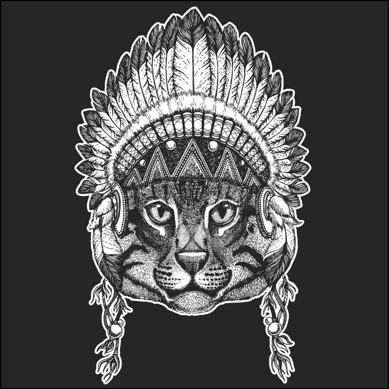 Dzikiego kota połowu kota rodowitego amerykanina Chłodno zwierzęcy jest ubranym indyjski pióropusz z piórka Boho szyka stylu ręka ilustracja wektor