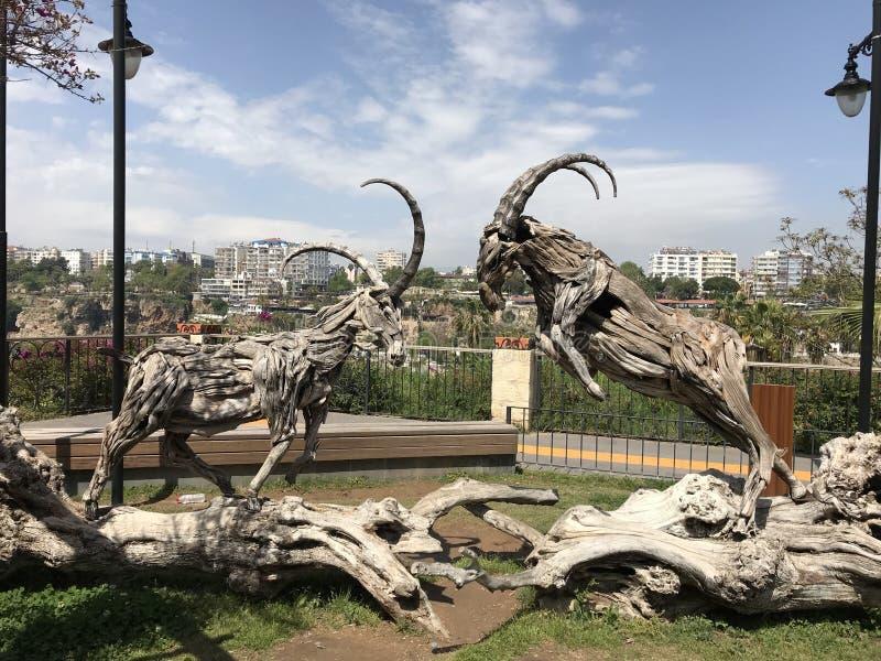 Dzikiej kózki rzeźba w parku zdjęcia stock