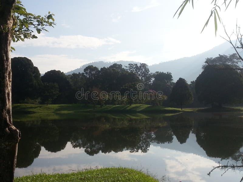Dzisiaj iść park dla spaceru na Niedzieli Today& x27; s pogoda jest bardzo dobra Bierze mnóstwo fotografie Zadawalam spojrzenie zdjęcia royalty free