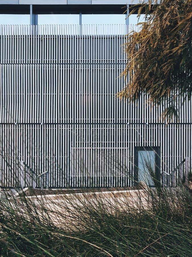 Dziurkowata fasadowa skóra Liggins instytut w Auckland 2018 zdjęcie stock