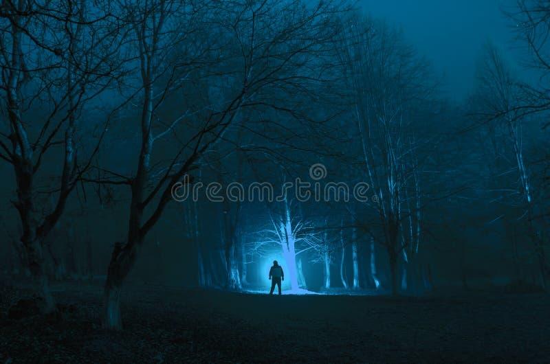 Dziwaczna sylwetka w ciemnym strasznym lesie przy nocą, mistyczni krajobrazowi surrealistyczni światła z przerażającym mężczyzna obrazy royalty free