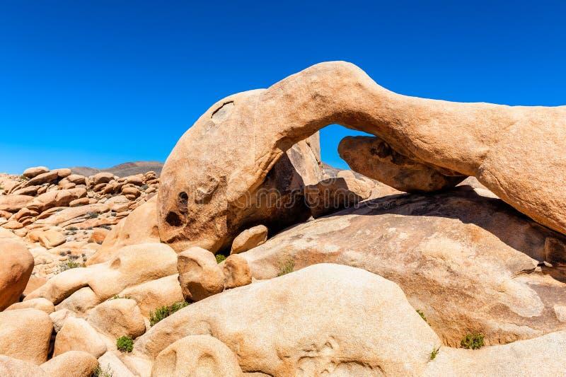 Dziwna Kształtna skała w Joshua drzewa parku narodowym obraz royalty free