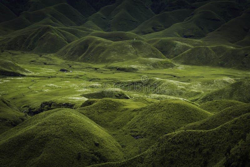 Dzukou dal, Nagaland, norr östliga Indien fotografering för bildbyråer