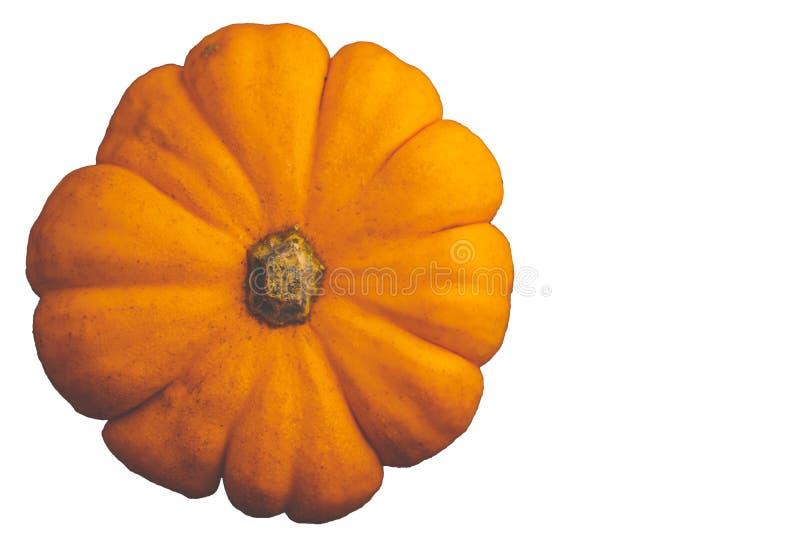 Eénmalige verse oranje miniatuur pompoen geïsoleerd op witte achtergrond stock afbeelding