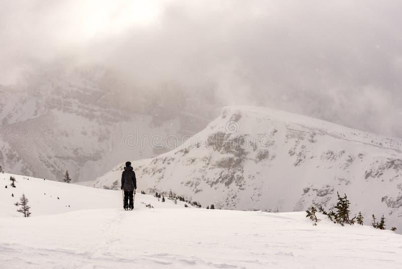 Żeńska narciarka w góry narciarstwa proszku obrazy royalty free