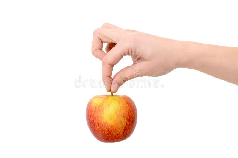 Żeńska ręka trzyma czerwonego jabłka na białym tle zdjęcie royalty free