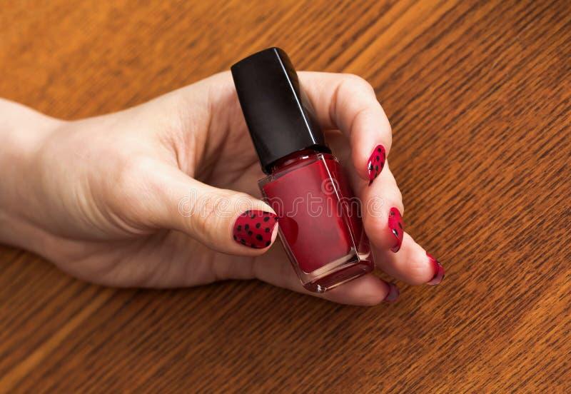 Żeńska ręka z czerwoną manicure'u mienia butelką gwoździa połysk zdjęcia royalty free