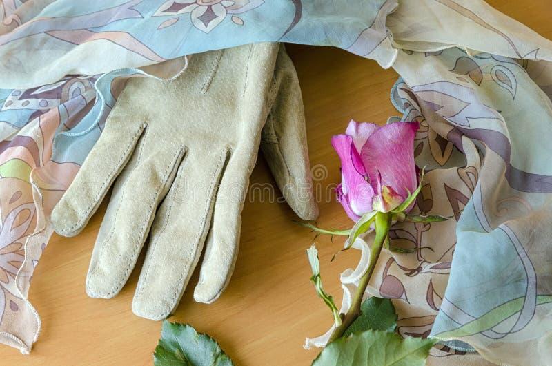 Żeńska rękawiczka z różą obrazy stock