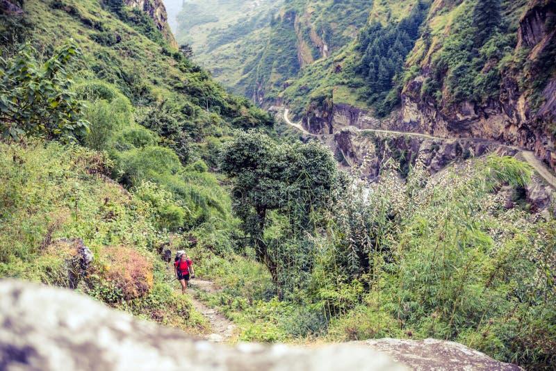 Żeński backpacker pięcie z plecakiem w himalajach, Nepal fotografia royalty free