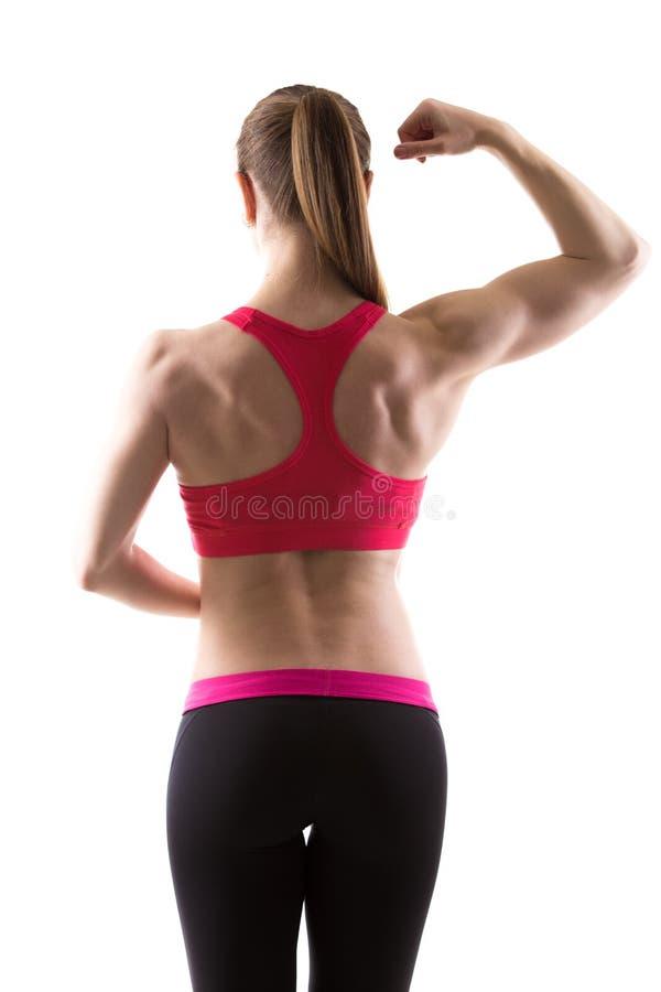 Żeński bodybuilder obrazy royalty free