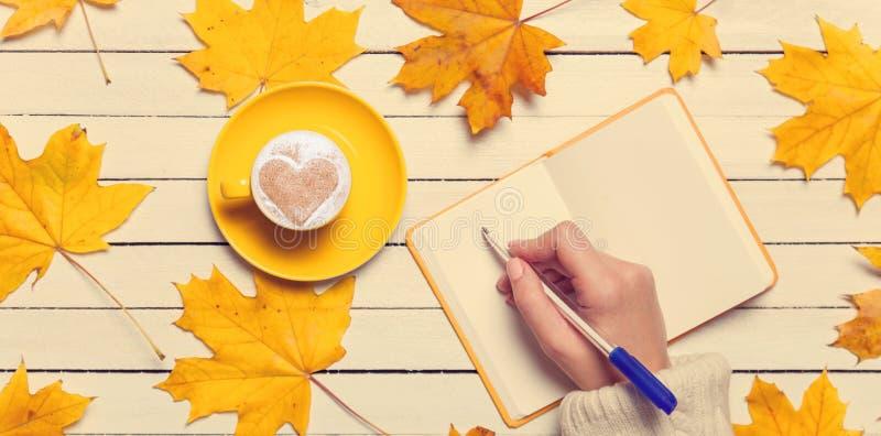 Żeński ręki writing coś zdjęcia royalty free