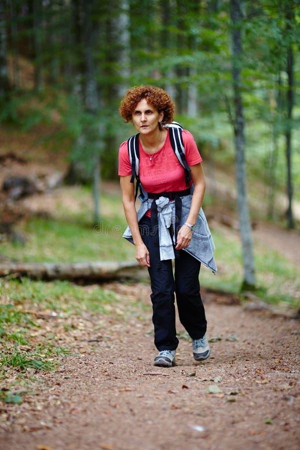 Żeński turystyczny wycieczkować w halnym lesie zdjęcie royalty free
