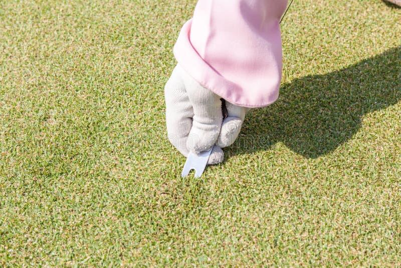 Żeńskiego personelu ręka w rękawiczkowym naprawiania divot na golf zieleni powierzchni zdjęcia stock