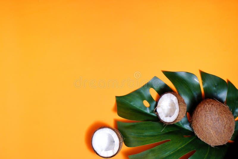 καρύδες και τροπικά φύλλα φυτών με πορτοκαλί φόντο Επίπεδο επίπεδο, επάνω όψη, αντιγραφή διαστήματος Υγιεινό μαγείρεμα στοκ εικόνες